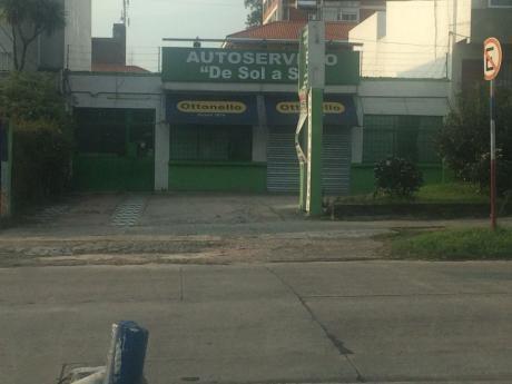 Alquiler De Local Comercial En Punta Gorda