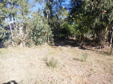 Terreno: 0e0te124lt Las Toscas Norte