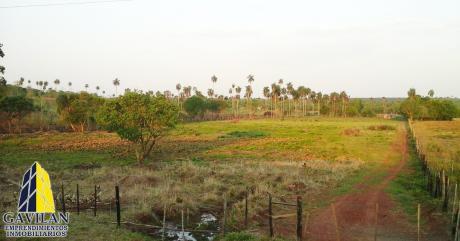 Tres Hectareas En El Km 30 Minga Guazu
