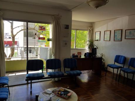 Apartamento En Centro De Maldonado
