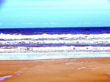 Venta Paquete Con Más De 500 Terrenos Playas De Brasil