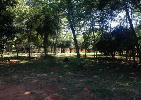 Regalo!! 3 Terrenos A Mts De Av/ San Antonio Limite Con Villa Elisa