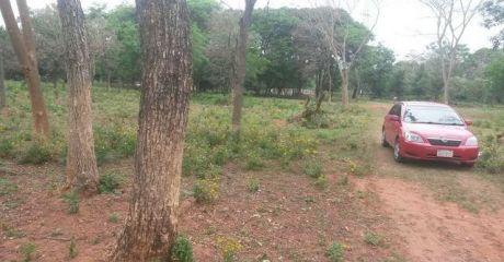 Oferto 4 Terrenos En Cañadita ñemby A 800mts De Acceso Sur
