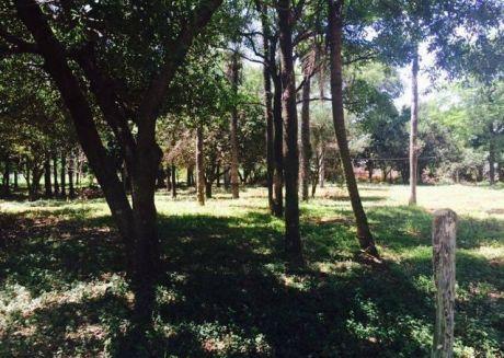 Oferto Ultimo Terreno De 16 X 40 M2 En Capiata -ruta 2 Km
