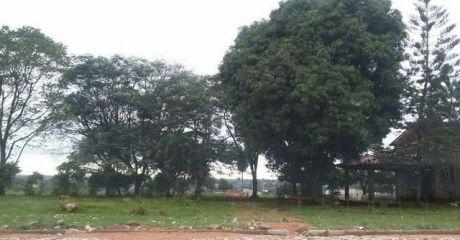 Oferto 3 Lotes En Esquina En Barrio San Isidro Lambare