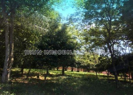 Oferto En ñemby 2 Hermosos Terrenos De 14 X 50 M2 C/u