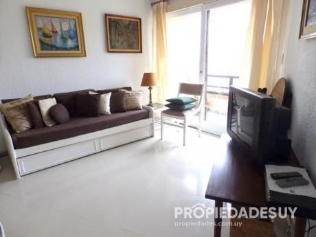 Pni - Departamento En Alquiler De 1 Dormitorio - 1 Baños En Punta Del Este