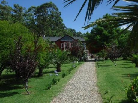 Chacras / Campos En Punta Ballena: Lpc10044h