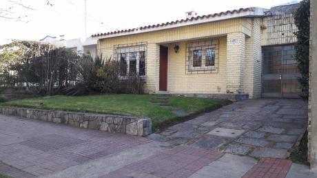 Dueño - Limburgo Y Palmas Y Ombúes