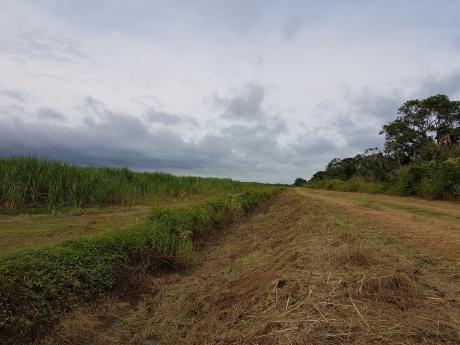 Propiedad Agropecuaria Cañera