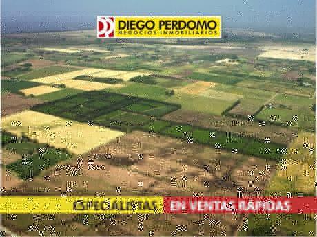 Chacra En Venta, 4.5 Has, Localidad De Libertad