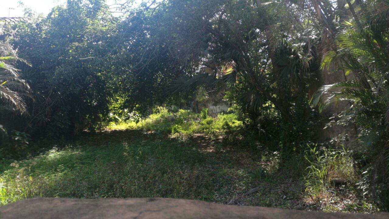 Vendo Terreno De 600 Mts.2 Calle Cerro Cora