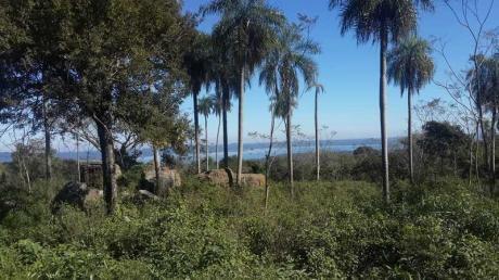Vendo 33.000 M2 En Altos – San Ber Con Excepcional Vista Al Lago