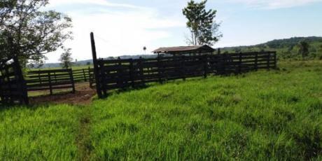 Estancia Ganadera En Caaguazú.  178 Hectáreas Para Cria Y Engorde