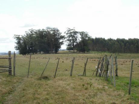 Campo A La Venta En Rocha