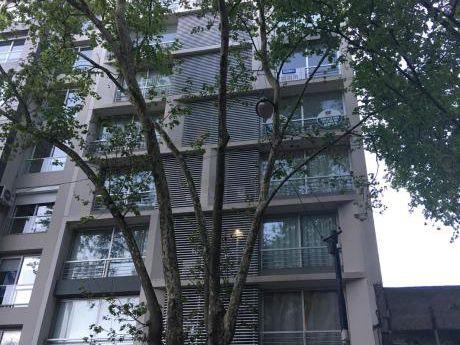 Impecable Apartamento En Cordón Sur, 2 Dorm, Garaje