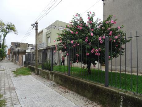 Alquiler Casa Bvr.artigas Y Yaguari