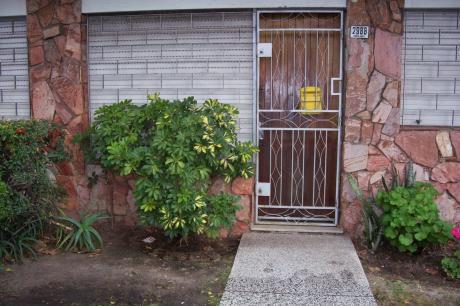 Susviela Guarch Y Centenario