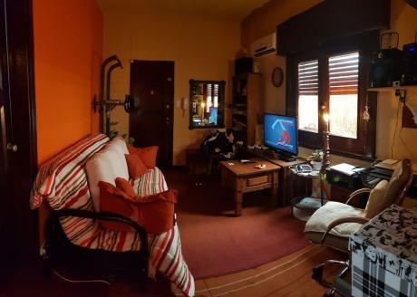 Apartamento 1 Dorm Con Patio Parque Batlle