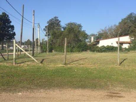 Alquilo Excelente Terreno En El Pinar