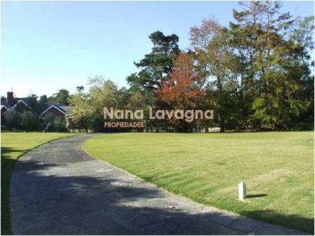 Casa En Alquiler Y Venta En Golf - Ref: 206484