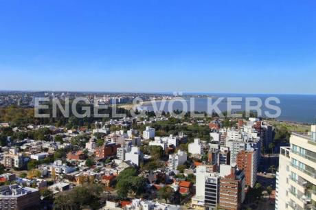 Oficinas De Primer Nivel En Montevideo