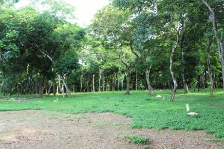 Hermoso Terreno Para Tu Casa Quinta (1.750 M2)