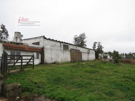 Chacra 4 Has, Montevideo, Próxima A Perimetral, 2 Casas, 3 Galpones