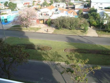 A Pasos Del Centro De Maldonado - 3 Dorm.