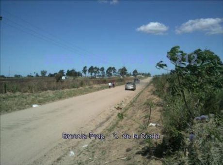 Oportunidad Chacra Zona Comercial 20 Hectareas Cw10340