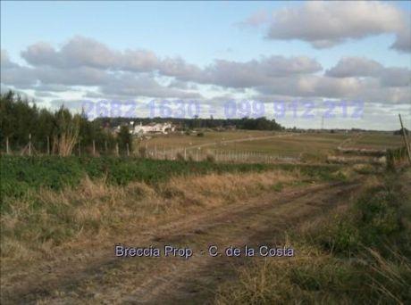 Chacra Rural Pegado A Colinas De Carrasco Cw10320
