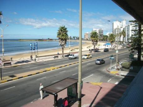 Frente Al Mar, Totalmente Equipado!!,