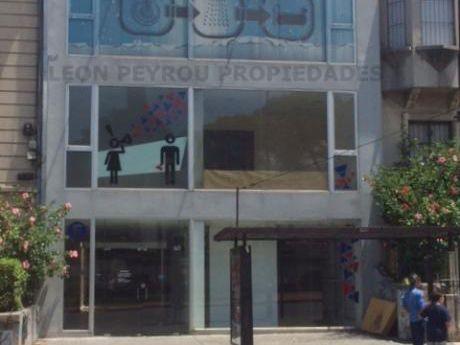 Local Ideal Oficinas Corporativas, Sobre Avenida, Pocitos