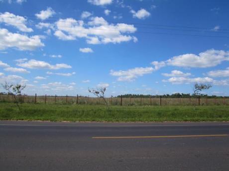 Alquilo 21 Hectáreas En Villeta, Sobre Ruta Que Va Directo Al Río Paraguay.
