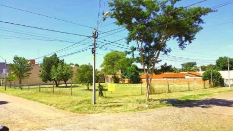 Terreno De 2000 M2 Los Laureles