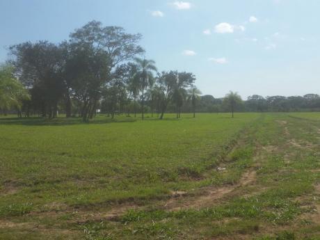 Terreno En Venta Carretera A Camiri Km 60