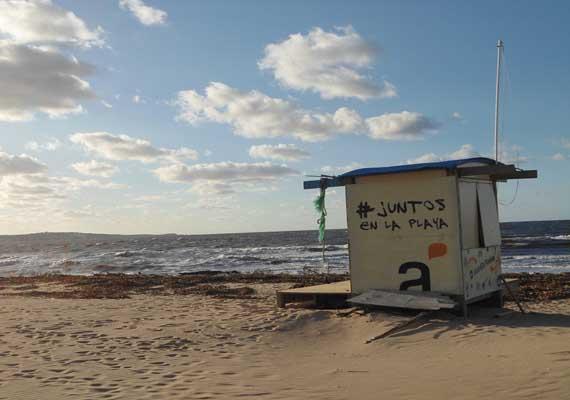 chihuahua-posada-playa.jpg