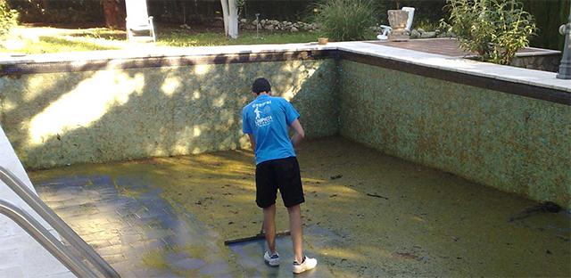 limpieza-piscinas.png