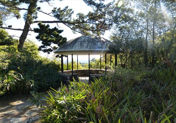 arboretum3.png