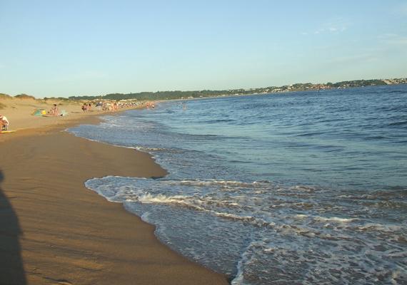ocean_park3.jpg