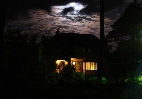 noche-la-falda.jpg