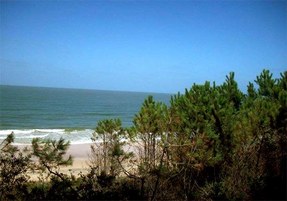 Playa-Fortin_1.png