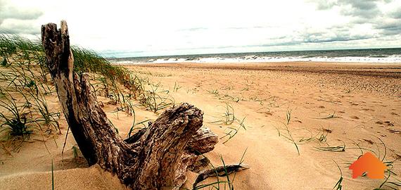 araminda-playa.jpg