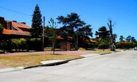 Penthuouse Duplex En El Corazon De Carrasco!!!