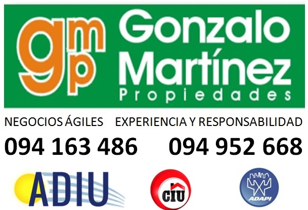 GONZALO MARTINEZ PROPIEDADES