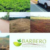 BARBERO AGRONEGOCIOS