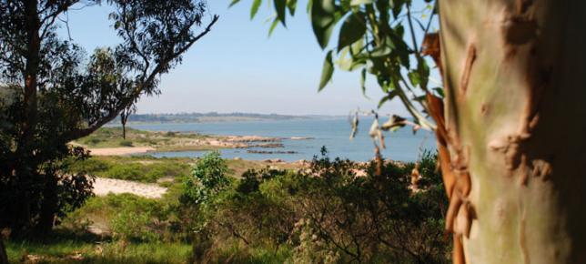 Los 8 rincones rurales de Montevideo que tenés que visitar esta primavera