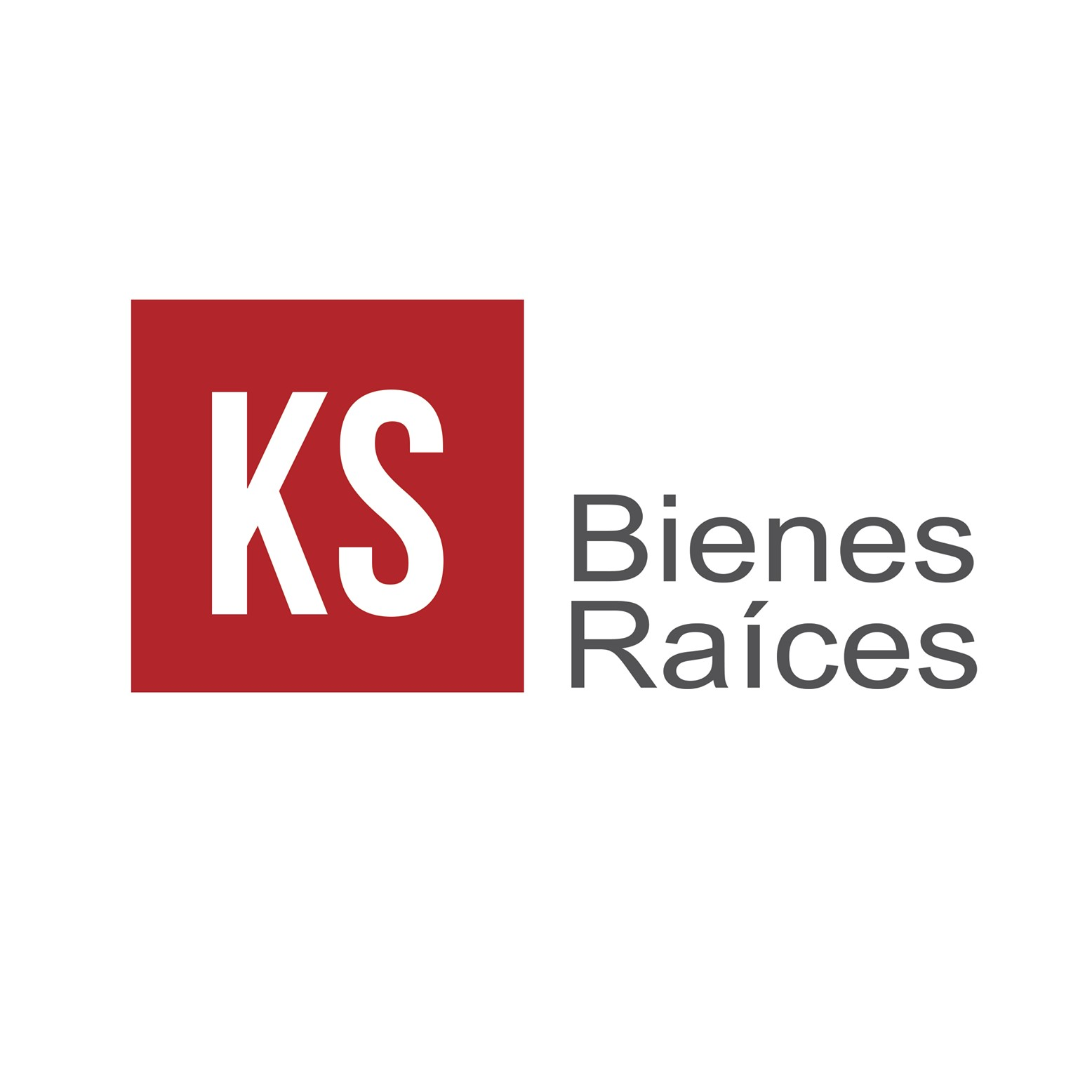 KS bienes raices inmobiliaria