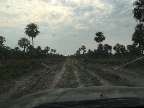 Venta De Estancia De 8000 Ha. En El Chaco