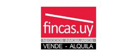 Fincasuy